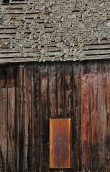 Barn with Orange